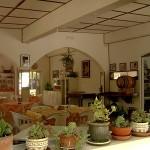 ristorante (Copia)